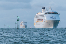 Cruise ship visits at record high at Station Pier